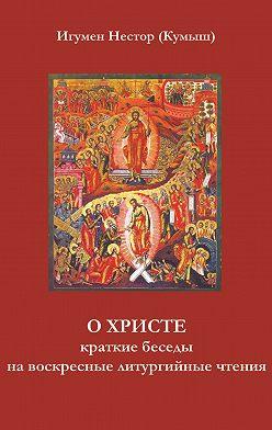 Игумен Нестор (Кумыш) - О Христе. Краткие беседы на воскресные литургийные чтения