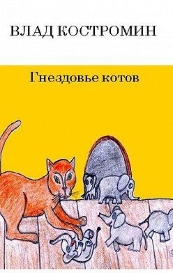 Влад Костромин - Гнездовье котов