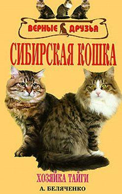 Андрей Беляченко - Сибирская кошка
