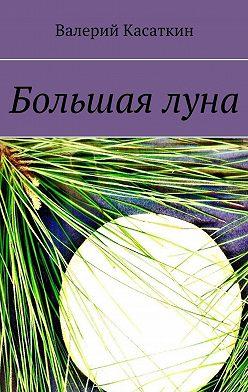Валерий Касаткин - Большаялуна