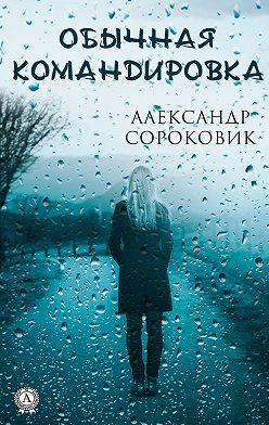 Александр Сороковик - Обычная командировка