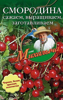 Николай Звонарев - Смородина. Сажаем, выращиваем, заготавливаем