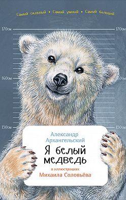 Александр Архангельский - Я белый медведь