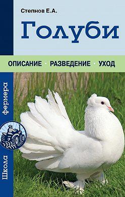 Евгений Степнов - Голуби