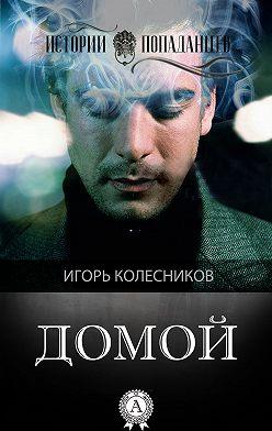 Игорь Колесников - Домой