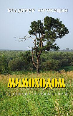 Владимир Ноговицын - Мимоходом. Дневник наблюдений