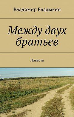 Владимир Владыкин - Между двух братьев