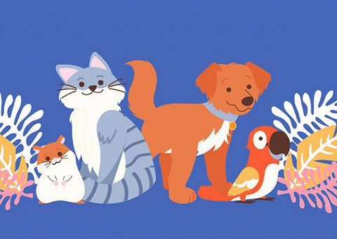 Кот Матроскин и сова Букля: топ популярных книжных животных