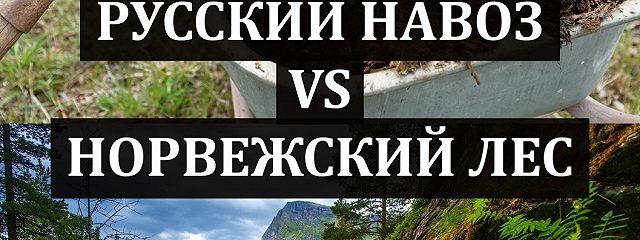 Русский навоз vs Норвежский лес