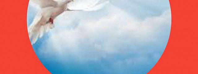 Осколок белого бумеранга
