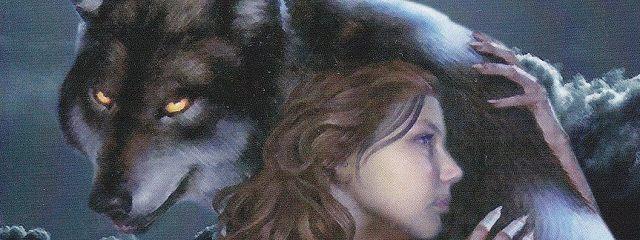 Взгляд волка