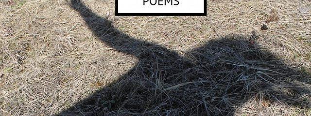 Ego vsSoul. Poems