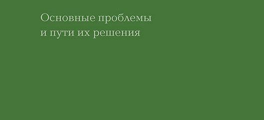 Особые дети и взрослые в России: закон, правоприменение, взгляд в будущее. Основные проблемы и пути их решения