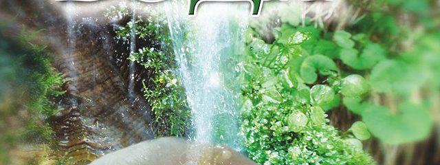 Целебная вода: живая, мертвая, святая и волшебная