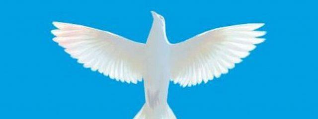 Христос – это свобода!
