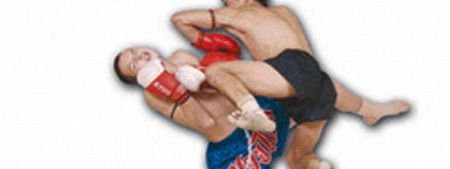 100 лучших приемов таиландского бокса