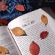 b__books