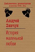 Андрей Зинчук -История маленькой любви