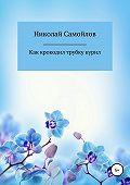 Николай Николаевич Самойлов -Как крокодил трубку курил