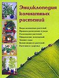Наталья Ивановна Логачева -Энциклопедия комнатных растений