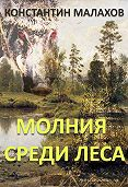 Константин Малахов -Молния среди леса