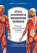 Елена Зигалова, Габриэль Билич - Атлас: анатомия и физиология человека. Полное практическое пособие