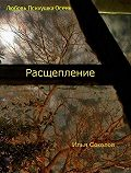 Илья Соколов -Расщепление