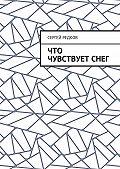 Сергей Редков -Что чувствуетснег
