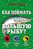 Алексей Горяйнов - Как поймать большую рыбу?