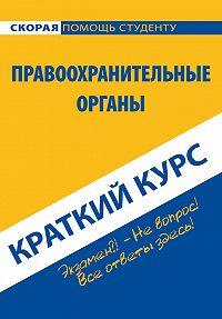 Коллектив авторов -Правоохранительные органы. Краткий курс