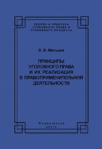 Василий Мальцев - Принципы уголовного права и их реализация в правоприменительной деятельности
