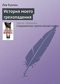 Лев Куклин -История моего грехопадения
