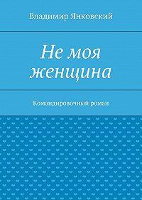 Владимир Янковский - Немоя женщина. Командировочный роман