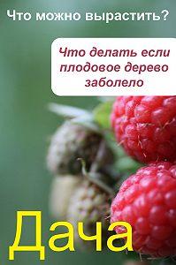 Илья Мельников -Что можно вырастить? Что делать, если плодовое дерево заболело