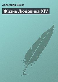 Александр Дюма -Жизнь Людовика XIV
