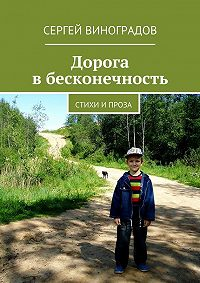 Сергей Виноградов -Дорога вбесконечность