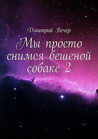 Дмитрий Вечер -Мы просто снимся бешеной собаке 2