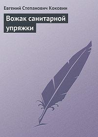 Евгений Степанович Коковин - Вожак санитарной упряжки