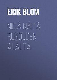 Erik Blom -Niitä näitä runouden alalta