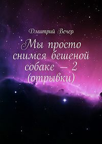 Дмитрий Вечер -Мы просто снимся бешеной собаке – 2(отрывки)