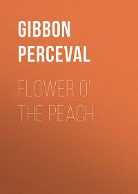 Perceval Gibbon -Flower o' the Peach