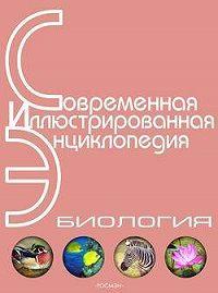 Александр Павлович Горкин -Энциклопедия «Биология» (без иллюстраций)