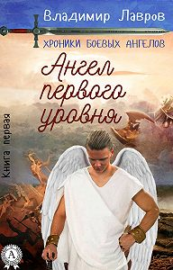 Лавров Владимир - Книга первая. Ангел первого уровня