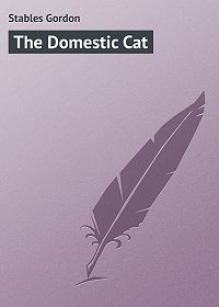 Gordon Stables -The Domestic Cat