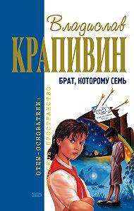 Владислав Крапивин -Брат, которому семь
