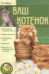 Ирина Иофина -Ваш котенок