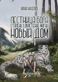 Юрий Киселев -Лестница бога. Ступень 1. Обретение магии. Новый дом