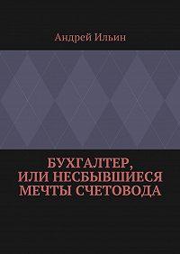 Андрей Ильин -Бухгалтер, или Несбывшиеся мечты счетовода