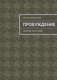 Тимур Зиатдинов -Пробуждение. Сборник рассказов