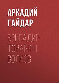 Аркадий Гайдар -Бригадир товарищ Волков